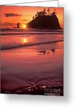 Sunset At Second Beach Olympic National Park Greeting Card
