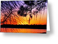 Sunset At The Lake 2 Greeting Card by Will Boutin Photos