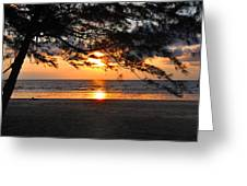 Sunset At Tropical Beach. Greeting Card