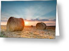 Sunset Bales Greeting Card by Evgeni Dinev