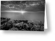 Sunset Bliss Bw Greeting Card