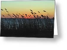 Sunset Colors Island Beach State Park Nj Greeting Card