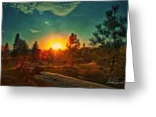 Sunset Greeting Card by Dan Quam