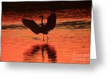 Sunset Dancer Greeting Card