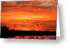 Sunset Detail  Greeting Card