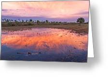 Everglades Afterglow Greeting Card