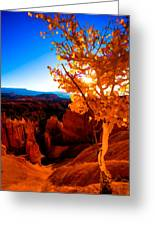 Sunset Fall Greeting Card