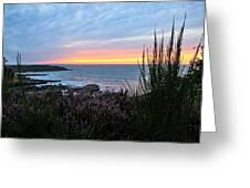 Sunset Garden View Greeting Card