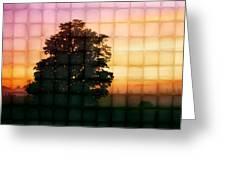 Sunset Grid 2 Greeting Card