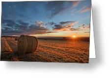Sunset Hay Greeting Card