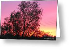 Sunset In April- Silute Lithuania Greeting Card