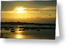 Sunset In Camargue - France Greeting Card