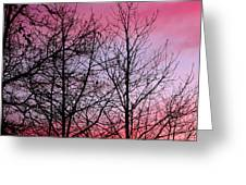 sunset in late February Greeting Card