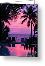 Sunset In Paradise Greeting Card by Lars Ruecker