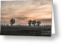 Sunset In The Country - Orange Greeting Card