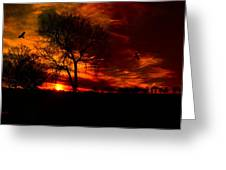 Sunset In The Field Greeting Card