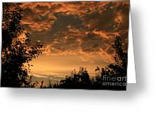 Sunset In The Orchard Greeting Card