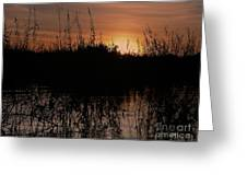 Sunset In The Pantenal Greeting Card