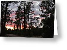 Sunset In The Pines Greeting Card
