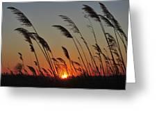 Sunset Island Beach State Park Nj Greeting Card