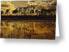 Sunset Jd Greeting Card