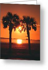 Sunset Greeting Card by Jennifer Burley