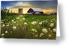 Sunset Lace Pastures Greeting Card by Debra and Dave Vanderlaan