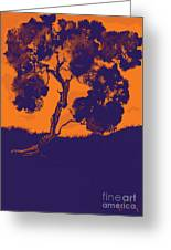 Sunset Madrone Greeting Card