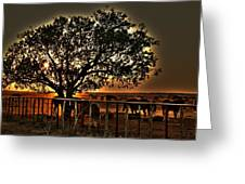 Sunset On A Texas Drought Greeting Card