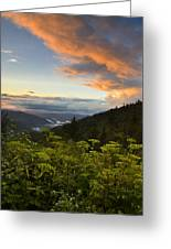 Sunset On Clingman's Dome Greeting Card