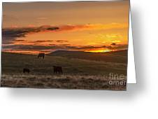 Sunset On Open Range Greeting Card