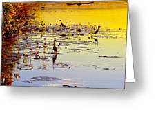 Sunset On Parry's Lagoon Greeting Card