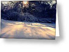 Sunset On The Briar Patch Greeting Card
