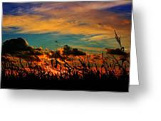 Sunset On The Corn Greeting Card