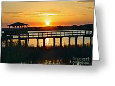 Sunset On The Palm Greeting Card