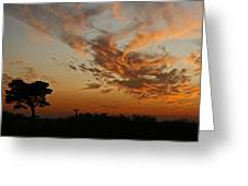Sunset Over Blueberry Field Greeting Card