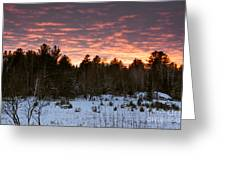 Sunset Over The Winter Forest Greeting Card