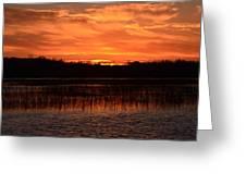 Sunset Over Tiny Marsh Greeting Card
