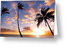 Sunset Palm Trees In Hawaii Greeting Card