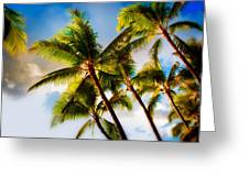 Sunset Palm Trees Greeting Card