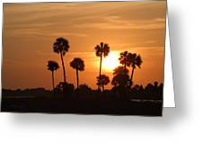 Sunset Palms 1 Greeting Card