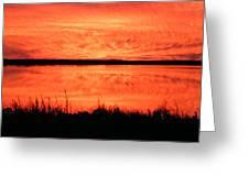 Sunset Panarama Lacassine Greeting Card