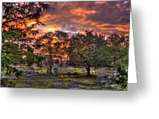 Sunset Reflections And Life Greeting Card