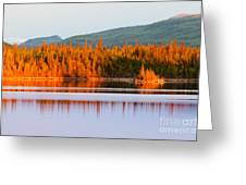 Sunset Reflections On Boreal Forest Lake In Yukon Greeting Card