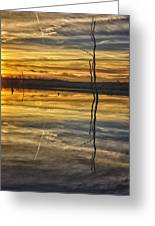 Sunset Riverlands West Alton Mo Dsc03317 Greeting Card
