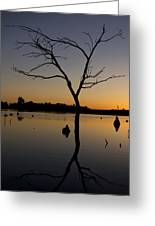 Sunset Riverlands West Alton Mo Portrait Dsc06670 Greeting Card