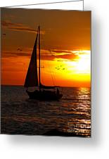 Sunset Sail Venice Florida Greeting Card
