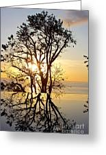 Sunset Silhouette And Reflections Greeting Card