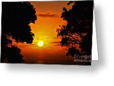 Sunset Silhouette By Diana Sainz Greeting Card