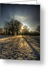 Sunset Snow Trees Greeting Card